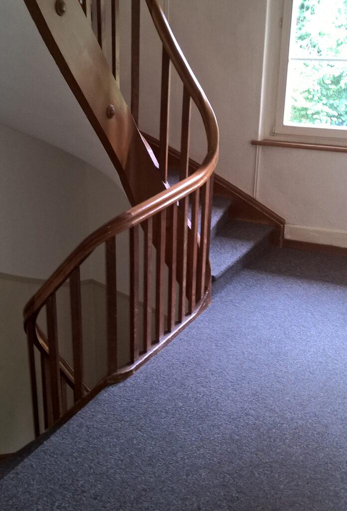Ein mit Teppich ausgelegtes Treppenhaus.
